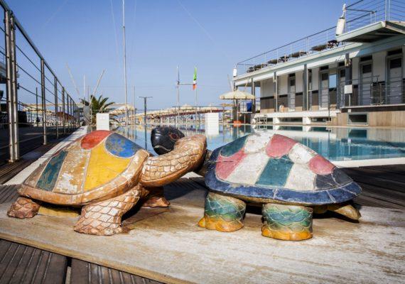 Turtle Mascotte